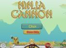 Game Ninja Bay 3