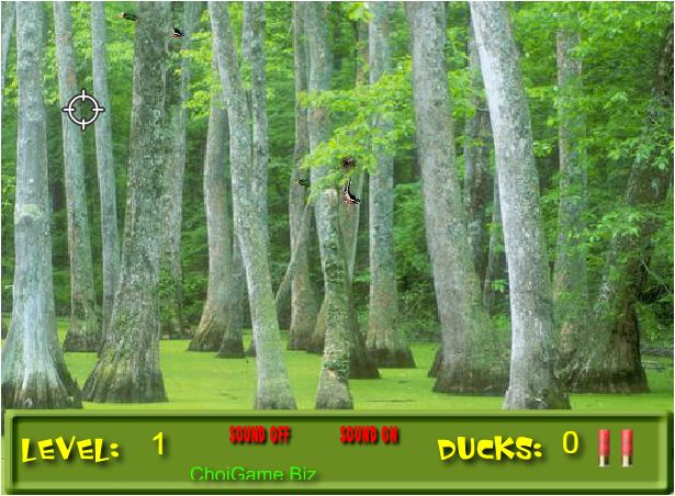 bắn vịt trong rừng